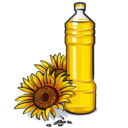 canola: cooking oil Illustration