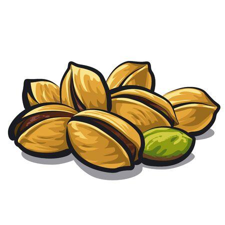 the kernel: pistachios Illustration