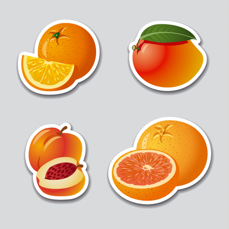 grapefruits: fruits stickers Illustration