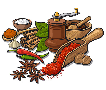 spices and flavors Stock Illustratie