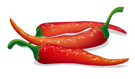 chilli pepper: pepper chilli
