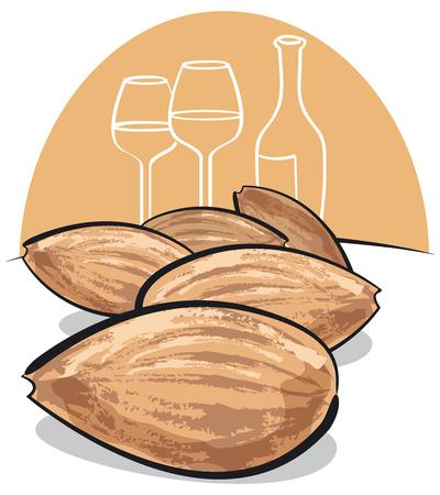 almonds: group of almonds Illustration