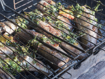 fish fire: grilled fish hake on fire, barbeque, picnic, summer