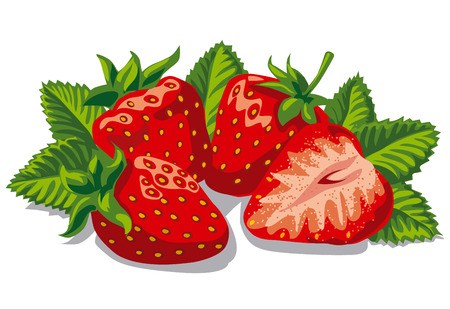illustration of fresh ripe strawberries with leaves Иллюстрация