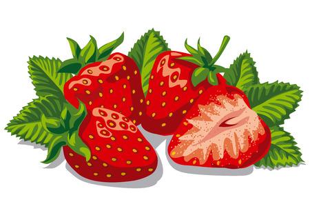 illustration of fresh ripe strawberries with leaves Vettoriali