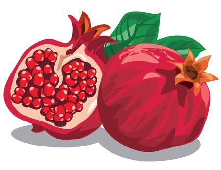 ripe: illustration of fresh ripe pomegranates with leaves Illustration