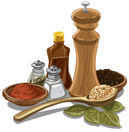 illustration of different natural spices and flavors for cooking