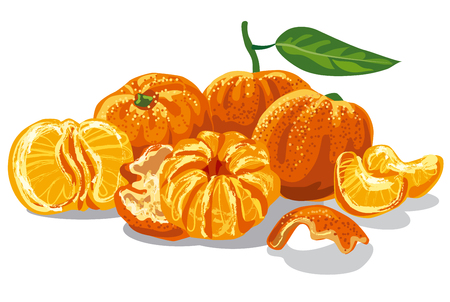 illustration of fresh juicy mandarines with leave Illustration