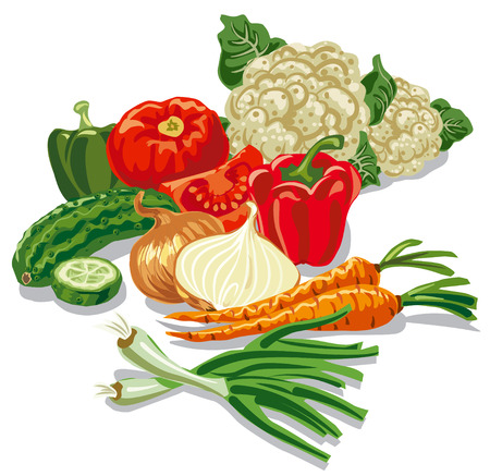 chives: illustration of harvest of different raw vegetables, tomato, onion, carrot, cucumber, pepper and cauliflower