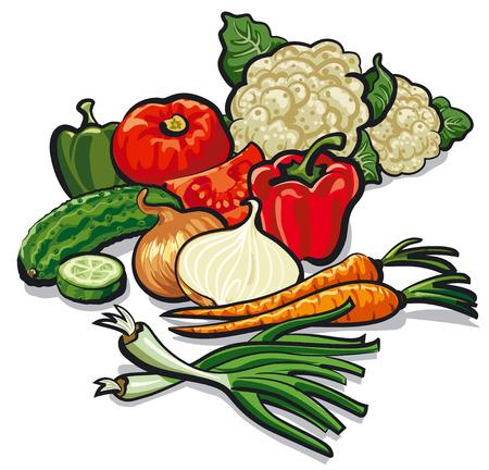 illustration of harvest of different ripe fresh vegetables