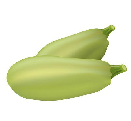 Two zucchini on the white Ilustracja