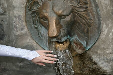 water source: the bride hands cool in the water source