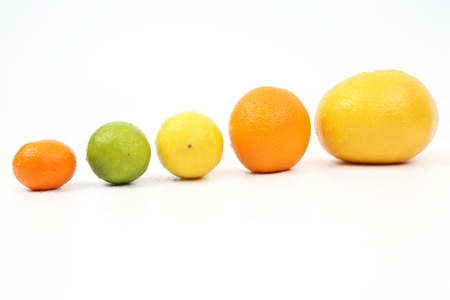 to incline: citrus fruits lie on an incline on a white background Stock Photo