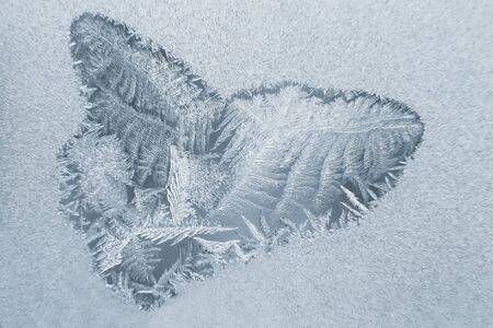 unusual frost on a winter window