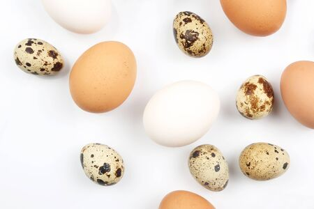 different quail and chicken eggs lie on white background