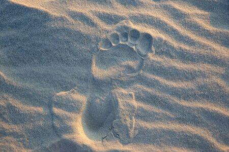 human footprints in the sand Reklamní fotografie