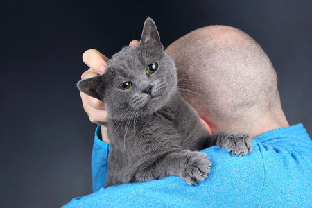 gray cat sitting on the shoulder of a man