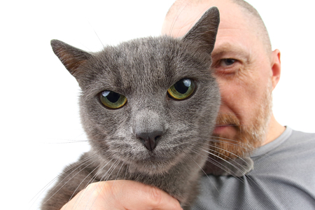 gray cat sitting on the shoulder of a bearded man