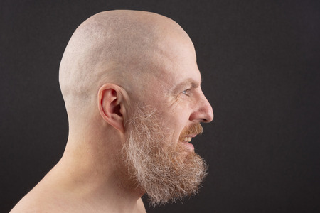 portrait of a bearded and bald man in profile