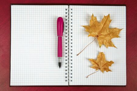 the open notebook and red pen with autumn leaf lying on a wooden table. subjects for business and education