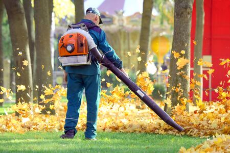 pracownik Parku oczyszcza trawę z opadłych liści za pomocą turbiny wiatrowej Zdjęcie Seryjne