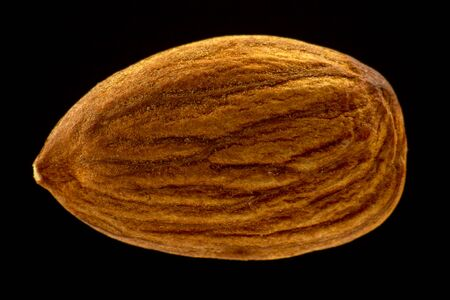 almonds very close-up on a dark background 写真素材