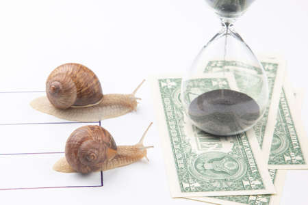 The snails compete first to reach the finish line with money. metaphor for business. time for success. persistence and speed of decision making. speed and financial victory