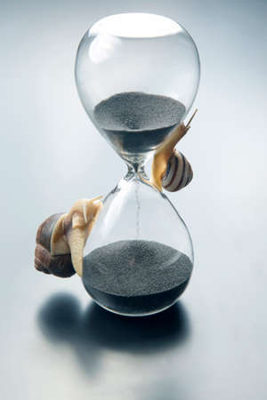 the snail crawls on the hourglass. time and stability. the transience of time and slowness in choosing success. the cyclical nature of life.