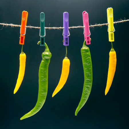 peppers hanging on clothespins. Vegetable vitamin food. Colored hot chili