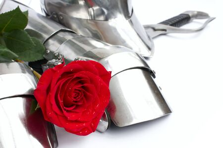 Rose and armor Stock Photo
