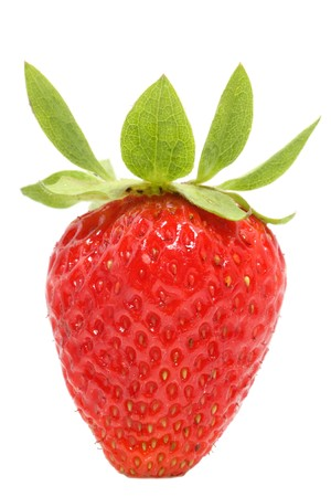 Single strawberry isolated on white background - closeup view