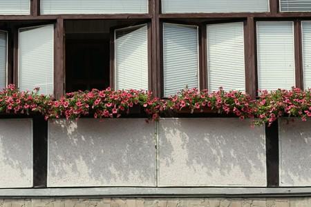 Opened window on balcony and flowers