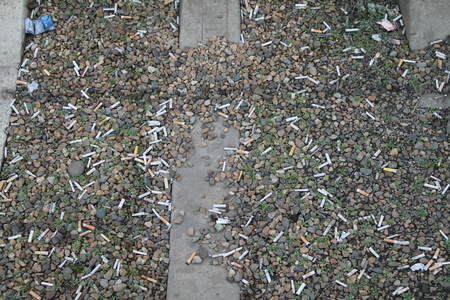 erent hummingbirds, Tramways, a stone embankment, cigarette butts, moved with stones, many cigarette butts, rail, gray, diff