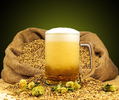 Fresh foamy beer in a glass Stock Photo
