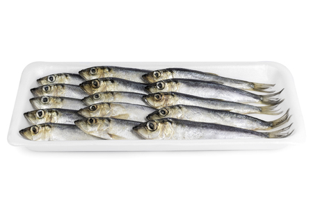 decomposed: Fresh sprat decomposed on a substrate Stock Photo