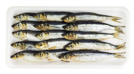 Fresh sprat decomposed on a substrate Stock Photo