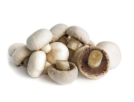Hill of fresh white champignon mushrooms on a white background Stock fotó