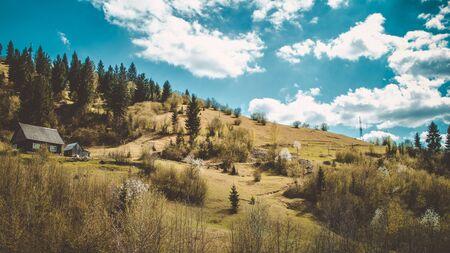 House in Carpathian Mountains