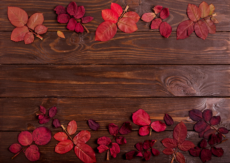 Flat lay frame of autumn crimson leaves on a dark wooden background. Selective focus. Stock fotó