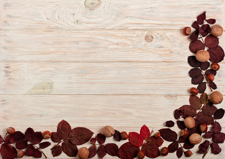 Flat lay frame of autumn crimson leaves, hazelnuts and walnuts on a light wooden background. Selective focus.
