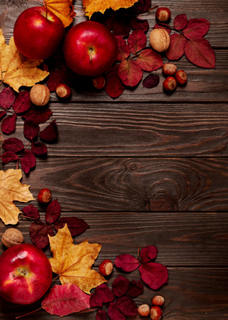 Flat lay frame of autumn crimson and yellow leaves, hazelnuts, walnuts and apples on a dark wooden background. Selective focus.