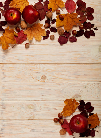Flat lay frame of autumn crimson leaves, hazelnuts, walnuts and apples on a light wooden background. Selective focus.