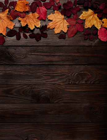 Flat lay frame of autumn crimson and yellow leaves on a dark wooden background. Selective focus.