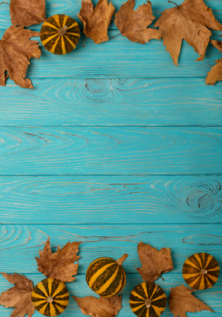Autumn yellow leaves with little decorative pumpkins on a blue wooden background. Flat lay concept.