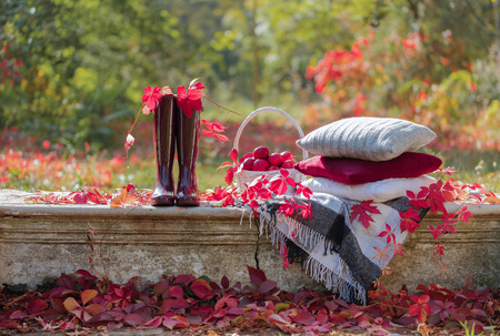 Autumn garden. On the stone bench there is a blanket, pillows, a basket of apples and a burgundy hat with rubber boots. Selective focus. Zdjęcie Seryjne
