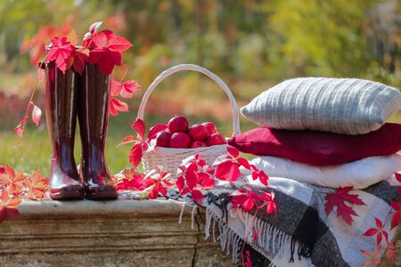 Autumn garden. On the stone bench there is a blanket, pillows, a basket of apples and a burgundy hat with rubber boots. Selective focus.