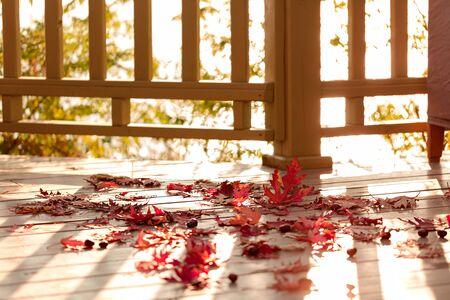 Colores de otoño. Hojas de arce rojo sobre fondo de madera gris. Enfoque selectivo. Efecto de desenfoque.