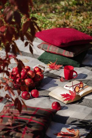 Autumn warm days. Indian summer. Picnic in the garden - blanket and pillows of gray, burgundy and green color on the background of autumn leaves. Selective focus. 免版税图像