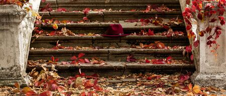Autumn leaf fall. Red and yellow leaves on the destroyed old stone steps burgundy (marsala color) hat. Blur effect.