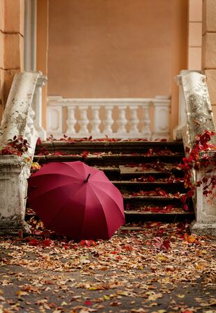 Autumn leaf fall. Red and yellow leaves on the destroyed old stone steps burgundy (marsala color) umbrella. Blur effect. 免版税图像